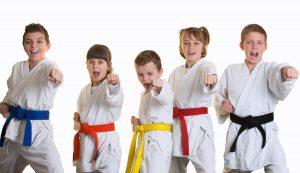 Karate - Erwachsene gemeinsames Training @ Akademie des Sports